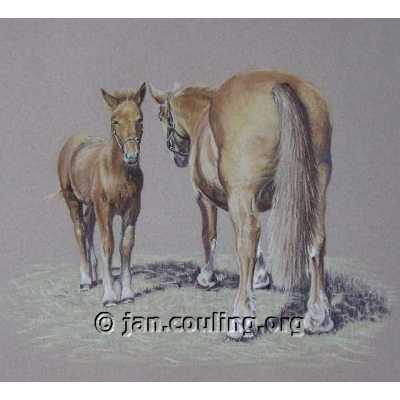 Suffolk Punch Mare and Foal (Print)